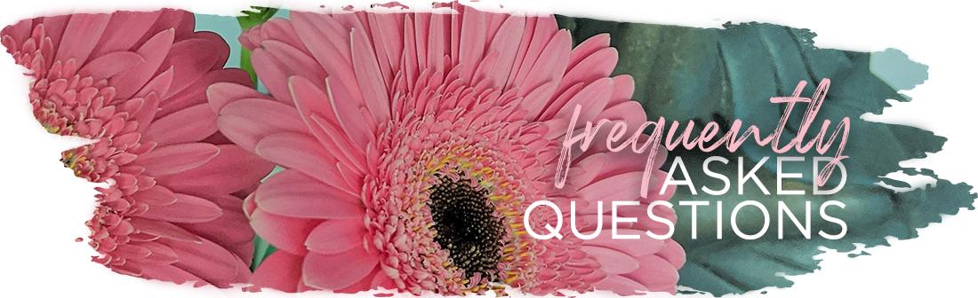 Andrea Brock Healing FAQ pink flower