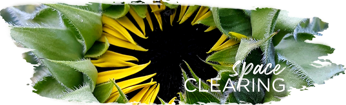 Andrea_Brock_Healing space clearing header sunflower