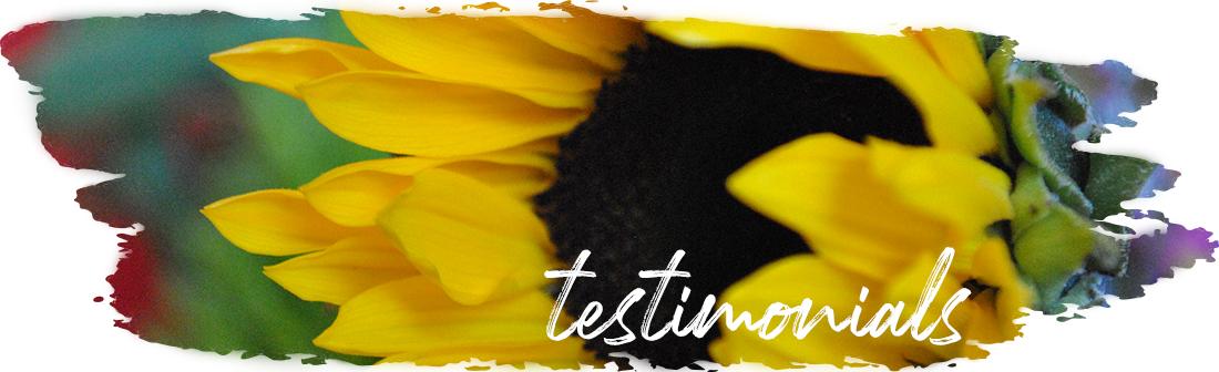 Andrea_Brock_Healing testimonials header sunflower